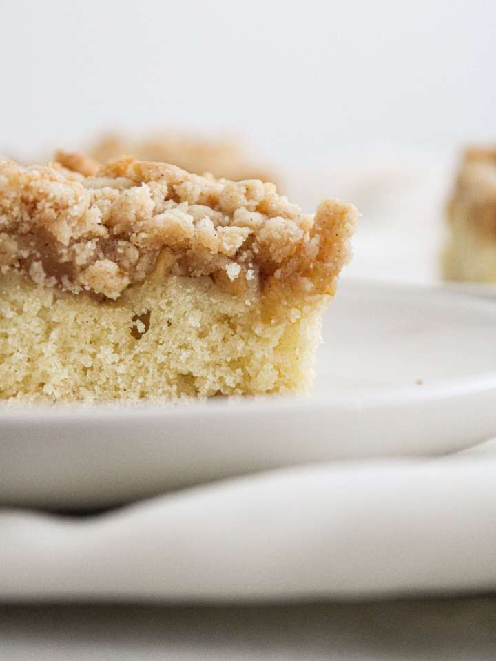 apple cake slice close up of side view