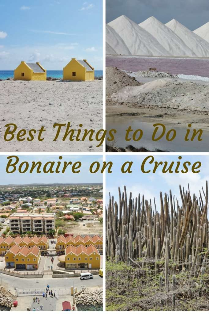 Best Things to Do in Bonair e on a Cruise