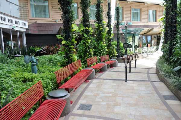 Top Reasons to Visit Oasis of the Seas Central Park