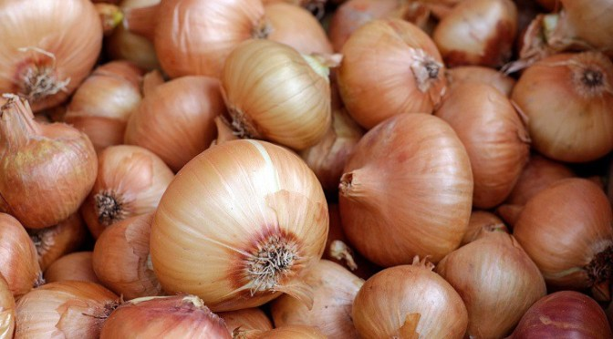 How to Plant, Grow & Harvest Onions in Your Vegetable Garden