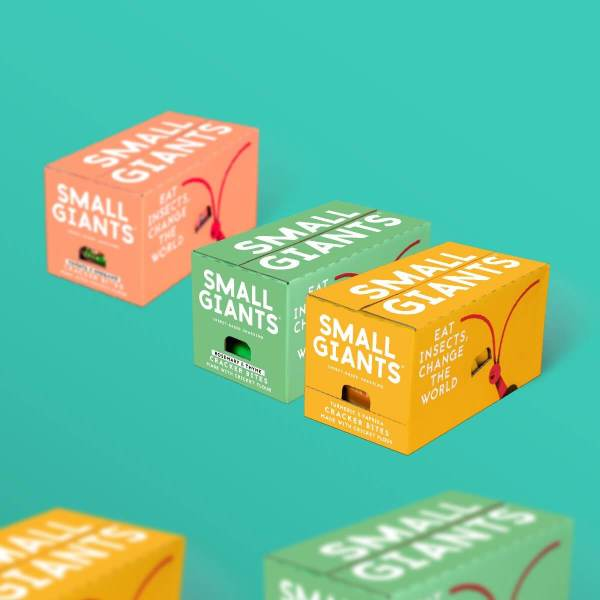 Small Giants Giant Value Pack enables you to try edible bugs in three flavours