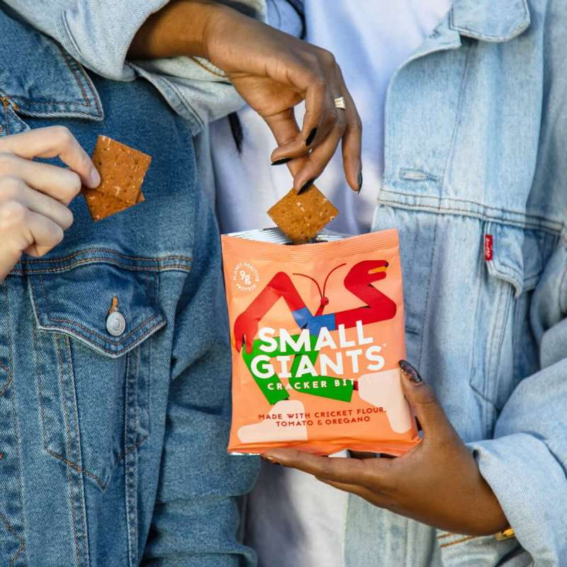 Small Giants Cricket Cracker Bites Tomato & Oregano are a great snack for everyone willing to reduce their meat consumption and adopt a flexitarian diet