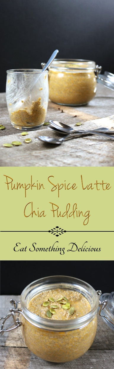 Pumpkin Spice Latte Chia Pudding | A decadent twist on the popular pumpkin spice latte. Simply blend the ingredients, stir in the chia seeds, and let set overnight in the fridge! | eatsomethingdelicious.com