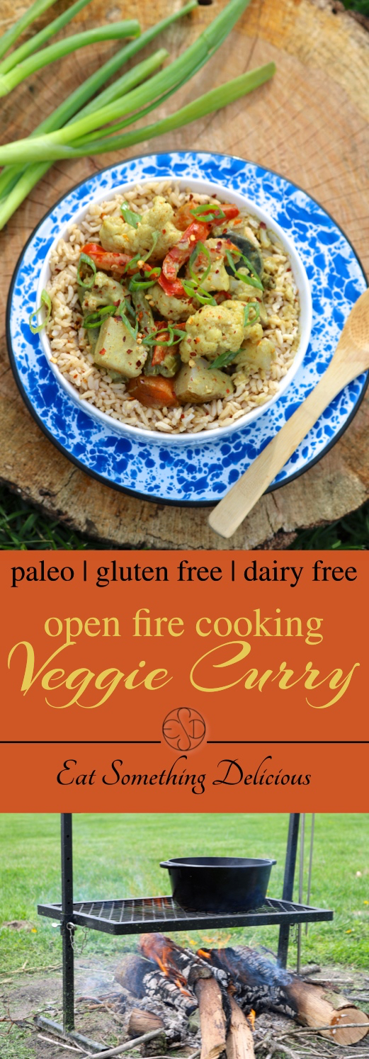 Open Fire Veggie Curry | Open fire cooking keeps your kitchen cool in the summer and is a great excuse to get outside. This vegan curry is a great, allergy friendly option! | eatsomethingdelicious.com