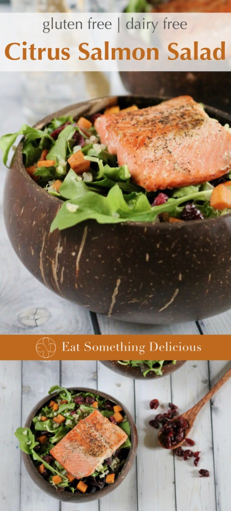 "Two images of citrus salmon salad joined together for Pinterest sharing purposes. The top has the text ""gluten free dairy free citrus salmon salad"" over it while a bar through the middle reads ""Eat Something Delicious""."