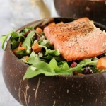 Up close of a salmon salad. Sweet potato, quinoa, and cranberries are visible.