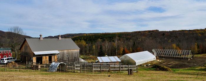 Green Mountain Girls Farm