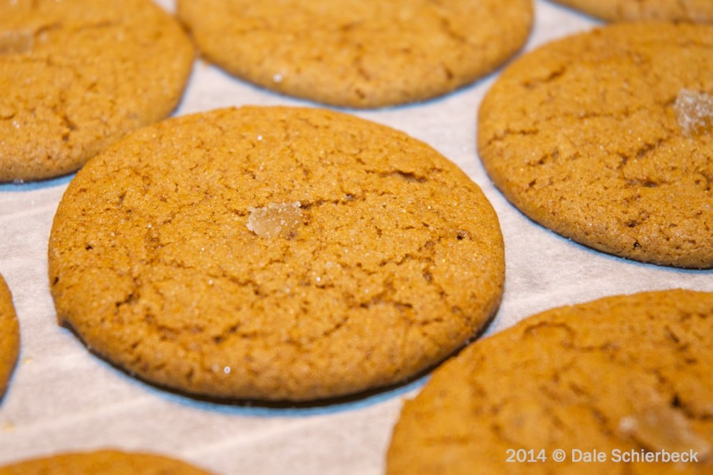 Triple Gingersnaps