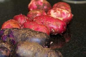 Tri-Coloured potatoes