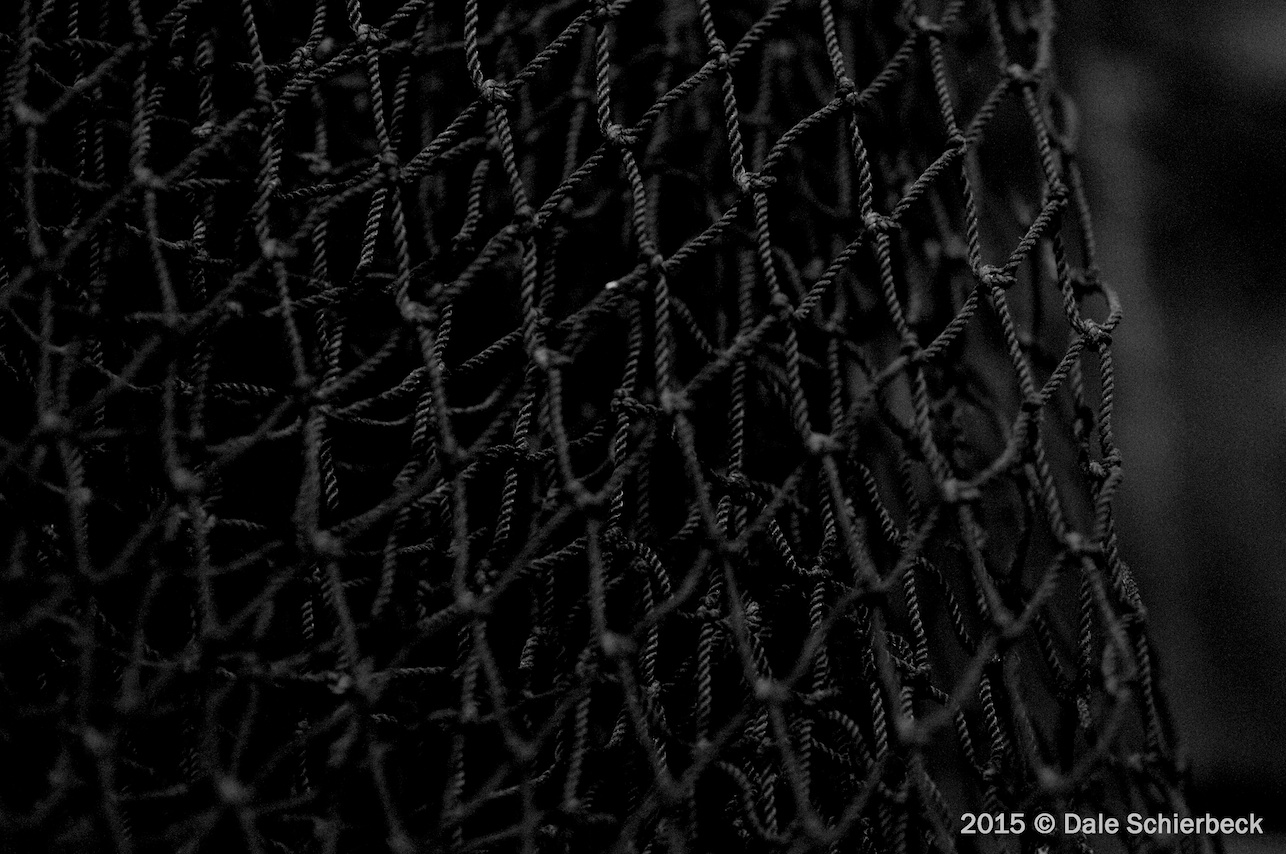 Monochrome Net1