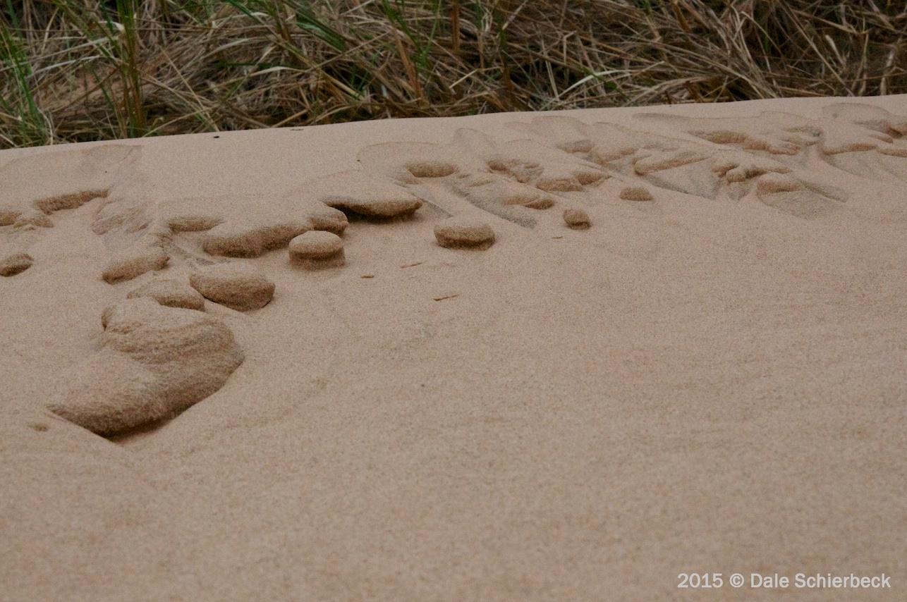 Dune Barrier5