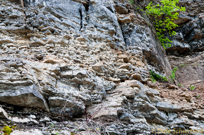 Cliff Face-8