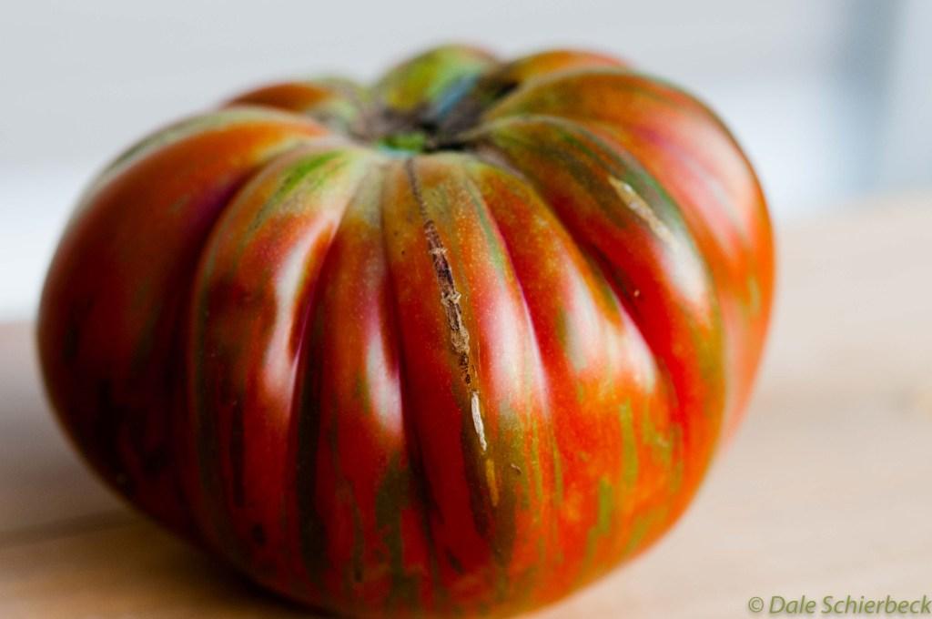 Coassack Tomato -1