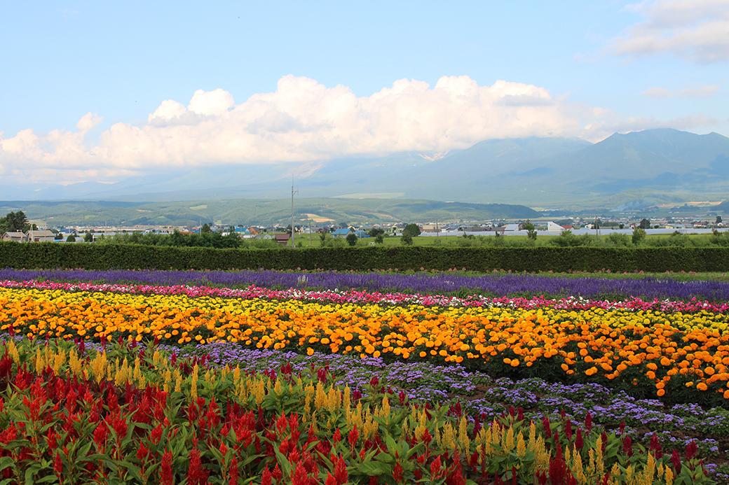 Explore The Hidden Beauty Of Hokkaido, Japan