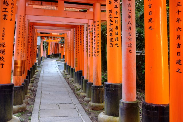 This is Fushimi Inari Temple, a must see during your two weeks in Japan