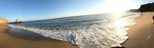 beach shoreline at panther beach, santa cruz california