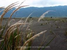 Caldeira, Mont Bromo, Indonésie