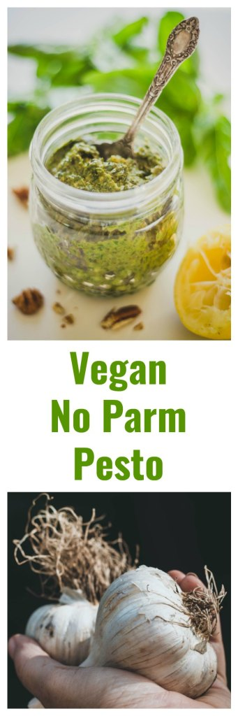 No Parm Vegan Pesto - Dairy-Free and Delicious!