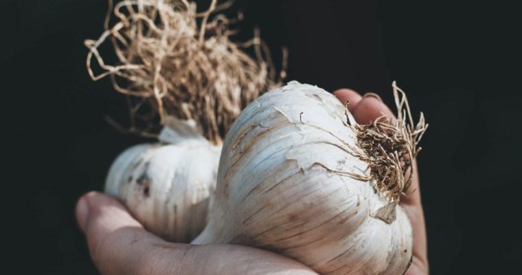 Next Year's Garlic Breath
