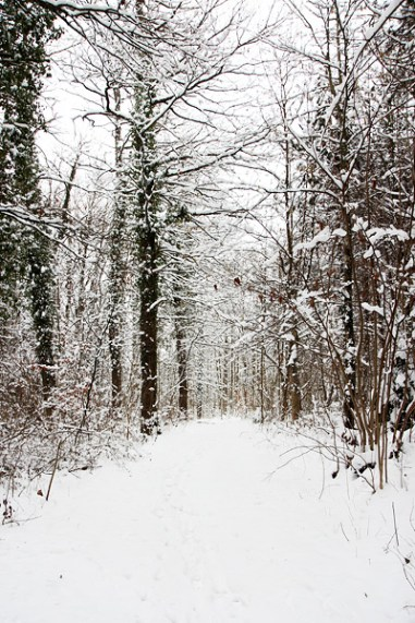 greneva-snow