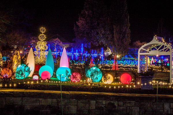 phipps conservatory winter flower show and light garden pittsburgh pa