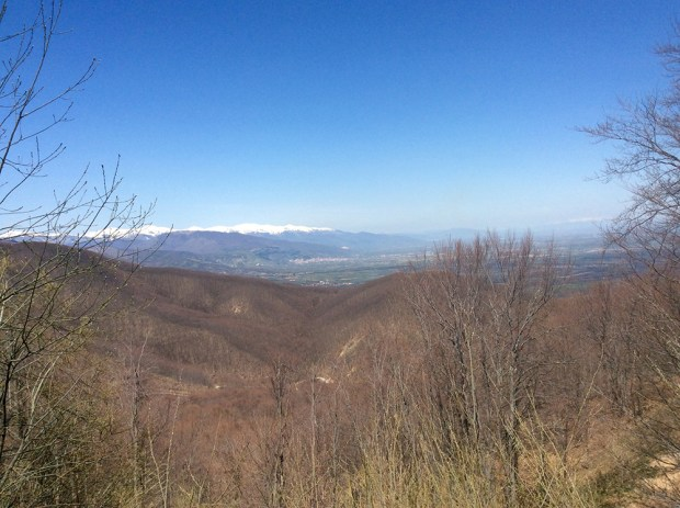 Mount Verno