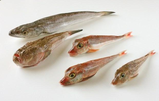 Greek fish soup @eatyourselfgreek
