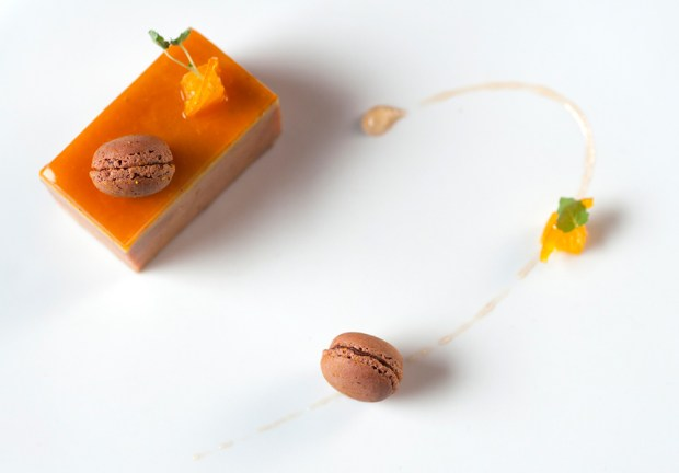 Foie Gras- Mandarine- Xocopili Chocolate Macarron