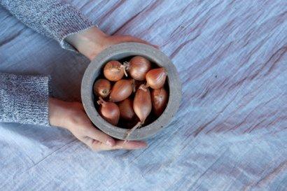 Cement bowls - itsrhoncus.com
