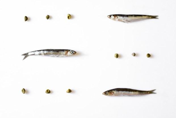 anchovies @eatyourselfgreek