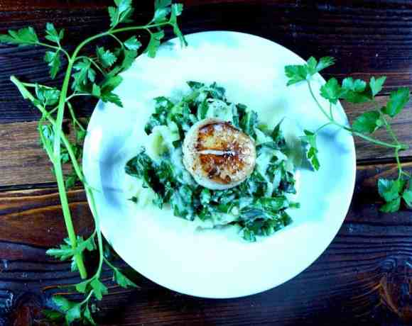 "Creamy collard ""pasta"" w/ seared scallops"