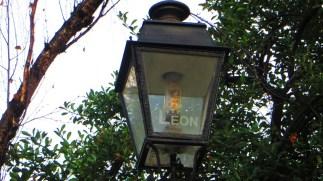 Léon grosplan