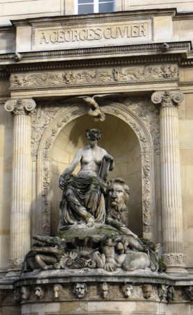 fontaine-cuvier