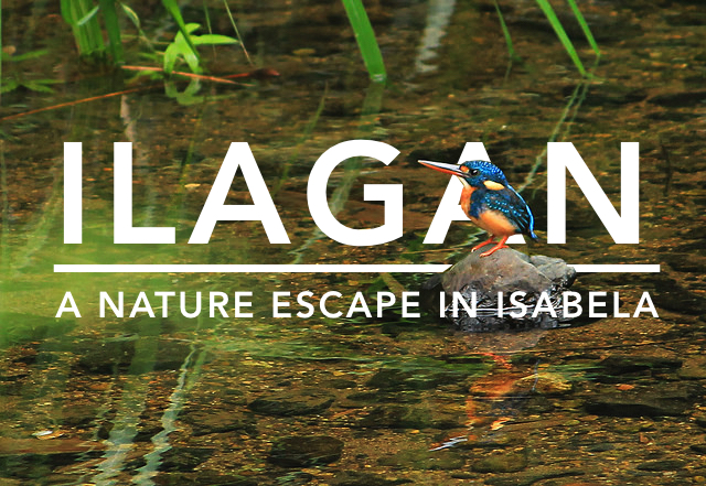 Ilagan Sanctuary: An Easy Nature Escape in Ilagan City, Isabela