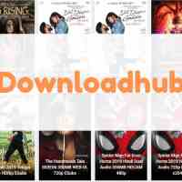 Downloadhub - 300MB Dual Audio Bollywood Movies Download