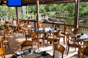 Elephant Safari Park 餐廳