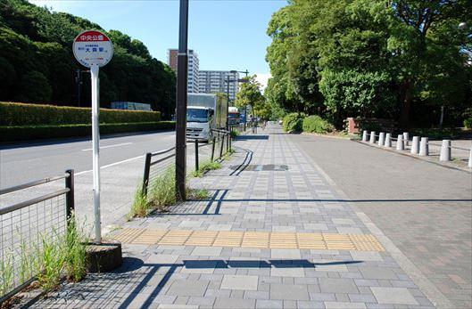 大井ふ頭中央海浜公園 清掃活動_R