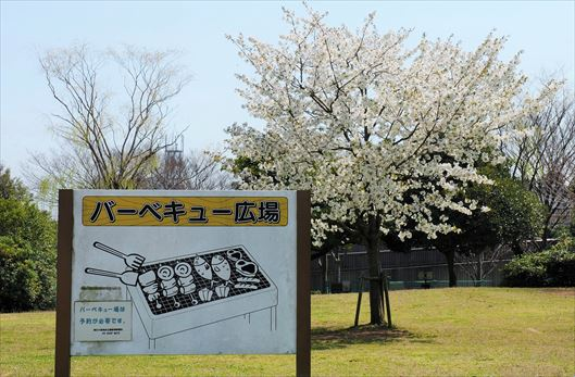 辰巳の森海浜公園 BBQレンタル