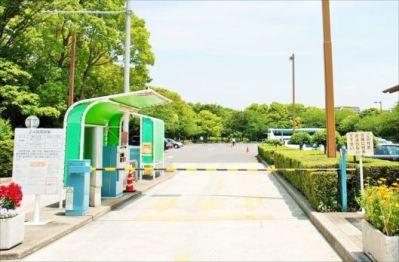 木場公園 BBQレンタル②