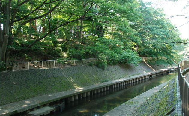 善福寺川 バーベキュー