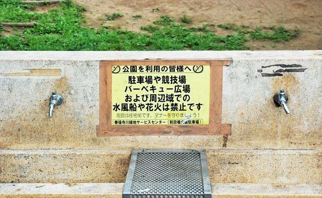 和田堀公園 水道