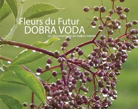 Retour sur la soirée du 25 mars 2016– Projection Débat «Fleurs du Futur : Dobra Voda «