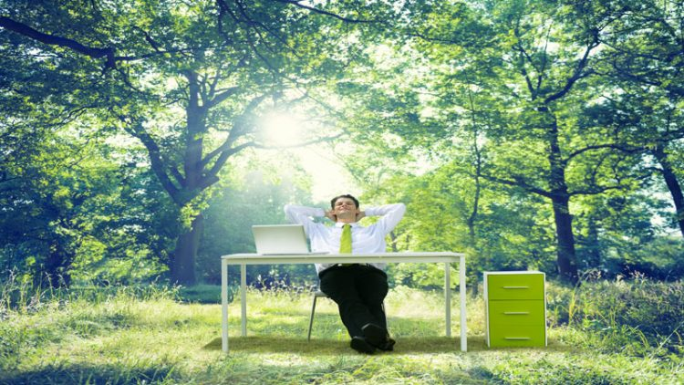 Green Establishment