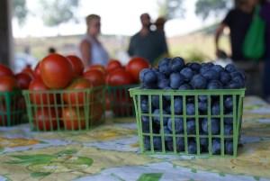 Seeds of Hope Farmers Market