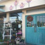 お花が好きです♡江別市野幌のお花屋さん フルールスモンシュシュ ふたりのマルシェ開催