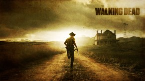 the_walking_dead_wallpaper_by_skywalkerdesign-d4n9qcw