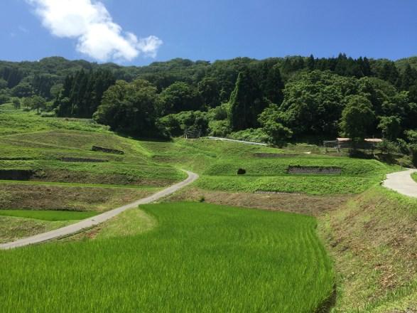 佐渡で棚田を見るなら岩首がオススメ!大自然の中に溶け込んだ景観美に感動!初めて訪れる人でも行きやすい!