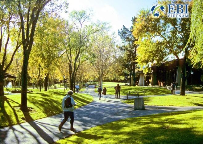 Khuôn viên cao đẳng Foothill
