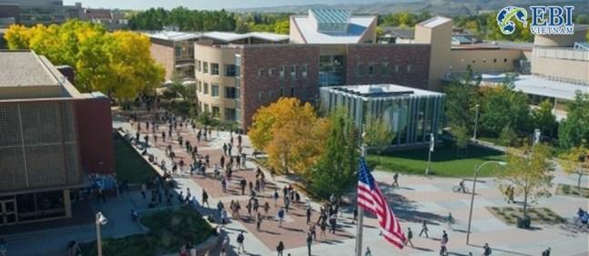 Trường đại học tại bang Colorado