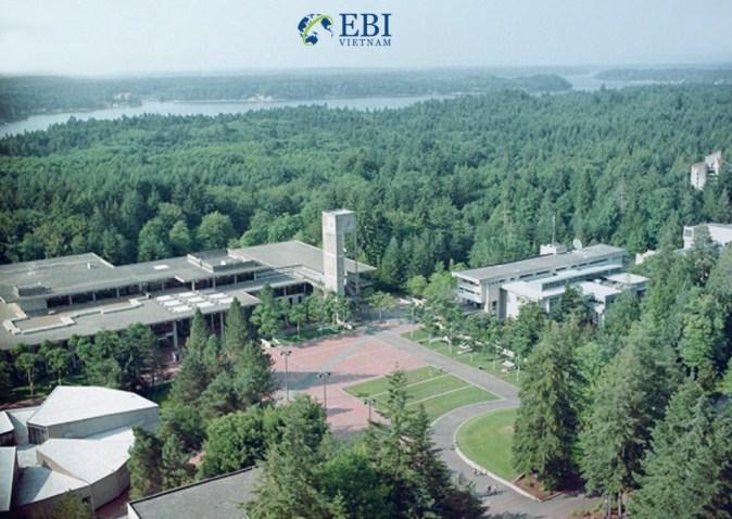 Không gian xanh tại cao đẳng Evergreen